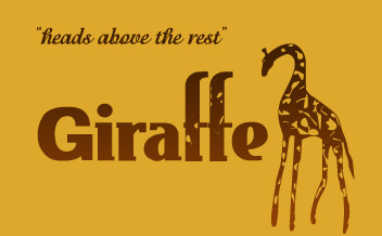Giraffe Web Development & Design, Website Designer Greenville, Website Design South Carolina